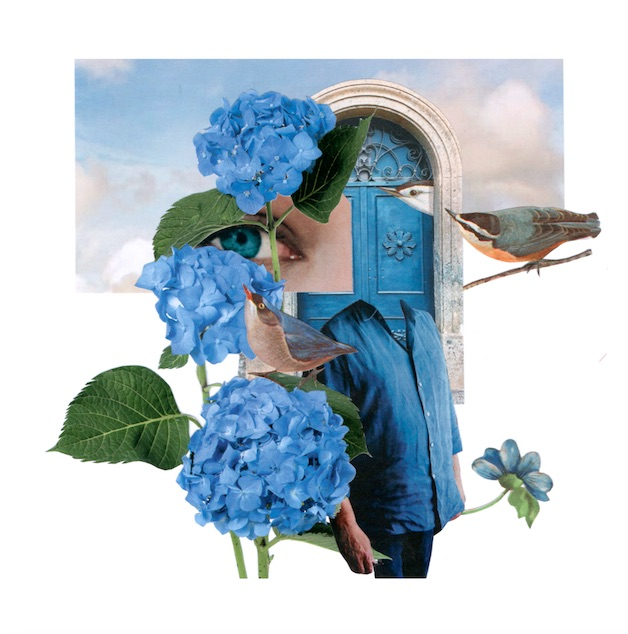 Québec Collage / Projet Bleu / Patricia Benavides