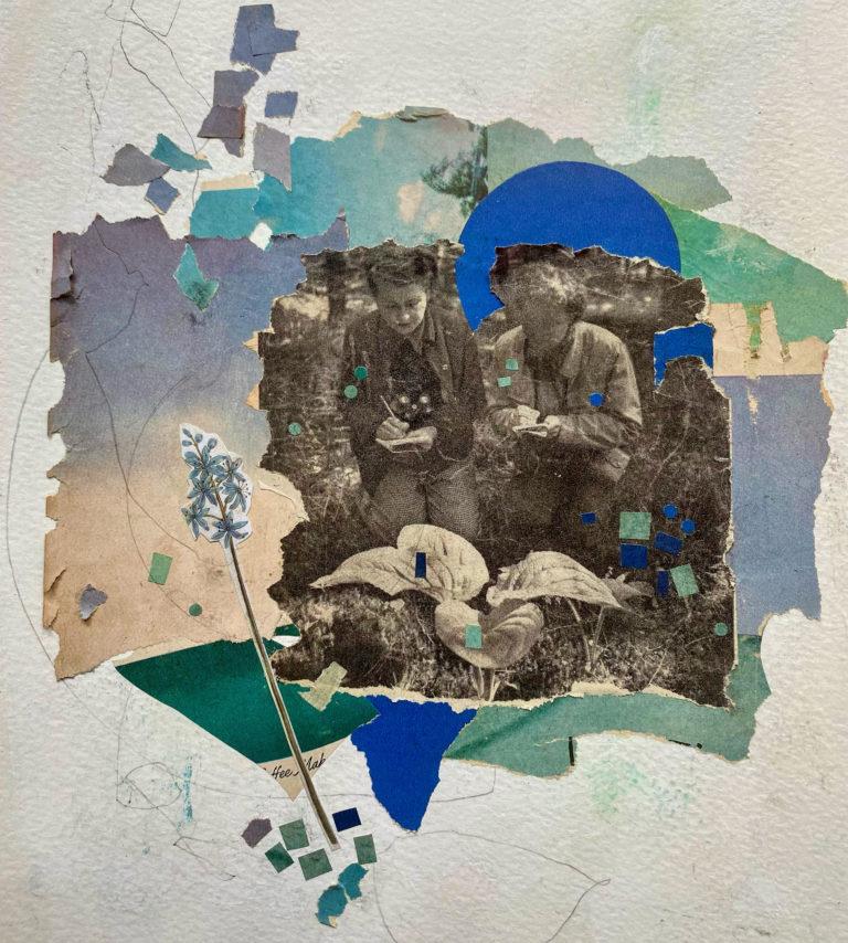 Québec Collage / Projet Bleu / Monique Vettraino